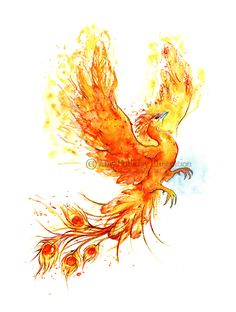 Amy Holliday Illustration : Tattoo: A Phoenix Risen!