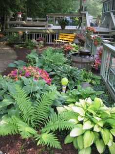 Here is my most recent expansion of my shade garden. Most of what you…