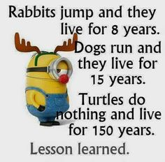 Minions has been one of the extremely hilarious and funny animated movies for all of us which had surely made entire globe fan of it because of the hilarious. Here are 26 Minions Memes exercise Memes Humor, Funny Minion Memes, Minions Quotes, Funny Texts, Minion Humor, Humor Quotes, Epic Texts, Minion Birthday Quotes, Despicable Me Quotes