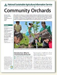 Interested in establishing a community orchard? Check out ATTRA's new publication on the topic! It offers a step-by-step guide to starting a community orchard and advice on choosing fruit trees and plants most likely to provide successful harvests, including apples, pears, grapes, brambles, and other, unusual fruits.