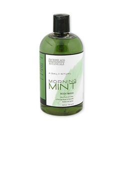16 oz. Mint Body Wash A refresing body wash that gently cleanses the skin. Suitable for dry and sensative skin. Use as part of a morning ritual. Apply foaming body wash in shower. Rinse thoroughly.     Body Wash by Archipelago Botanicals. Home & Gifts - Gifts - Scents & Bath Rhode Island