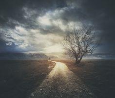 Pathway_Julia_Starr.png