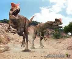 Risultati immagini per dilophosaurus