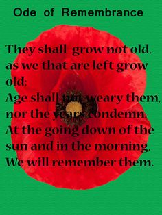 For Remembrance Day