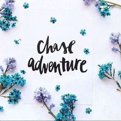 Which one do you want to share adventure?
