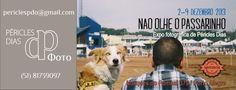 """A mostra fotográfica """"Não Olhe o Passarinho: fotos de rua"""", de Péricles Dias, fica em cartaz no Spritzeria Pane & Spritz, em Porto Alegrem, entre os dias 2 e 9 de dezembro, com entrada Catraca Livre."""