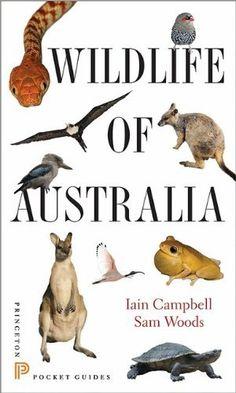 Australian Wildlife - General books | Boffins Bookshop