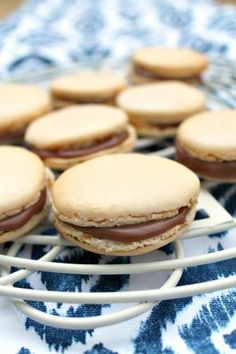Macarons with Chocolate Rose Ganache