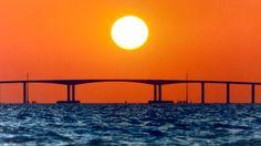 Image from http://www.figgbridge.com/Images/Bridge%20Portfolio/Long%20Span%20Bridges/Dauphin%20Island/Dauphin_Island_3.png.