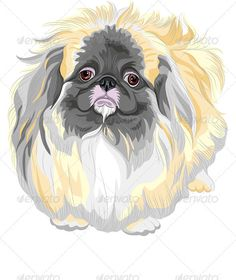 vector Pedigreed Dog Sable Pekingese Breed   #GraphicRiver         Color sketch sad Sable Pekingese dog (Lion-Dog, Pekingese Lion-Dog, Pelchie Dog, or Peke). EPS 8 plus high-quality Jpeg. No gradients, no transparency, no blends, no meshes.  	         	      Created: 8February13 GraphicsFilesIncluded: JPGImage #VectorEPS Layered: Yes MinimumAdobeCSVersion: CS Tags: ChineseSpaniel #Peke #PelchieDog