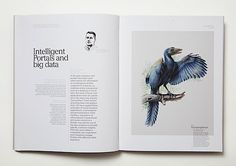 Editorial Design Inspiration: The Missing Link