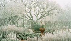 garden in winter (herb garden at RHS Wisley in Surrey)