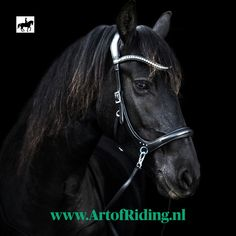 The FRA side Pull bridle complete with soft reins with clip. Swarovski stones in hanging browband and on the nose, anatomic shaped headpiece and lined. Swarovski Stones, Horse Stuff, Headpiece, Black And Brown, Horses, Eyes, Leather, Headdress, Horse