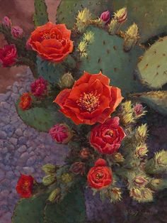 Blooming red Prickly Pear blooms, a painting by artist Lucy Dickens Cacti And Succulents, Planting Succulents, Cactus Plants, Planting Flowers, Cactus Flower, Flower Art, Cactus Painting, Desert Flowers, Foto Real