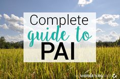 If you love waterfalls, hot springs, mountains, and the occasional (or  frequent) cocktail, Pai is likely on your Thailand itinerary. We've put  together a complete guide with all the tips and things you need to know  before heading to Pai.Continue reading to find out what to do (including  some lesser-known gems), what not to do, and where to find the best grub!