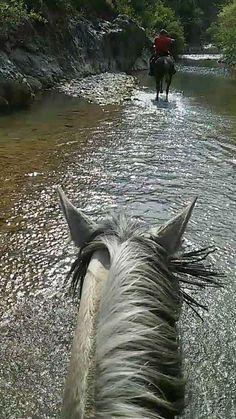 Paseo a caballo por el Valle del Genal (Málaga) / A horse ride by Genal Valley (Málaga), by @Peter_Josac