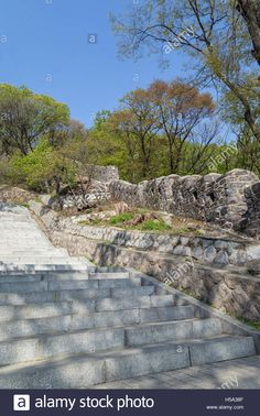 Download this stock image: Stairway and old fortress wall (or City Wall) in a lush and verdant forest at the Namsan Hill in Seoul, South Korea. - H5A38F from Alamy's library of millions of high resolution stock photos, illustrations and vectors.
