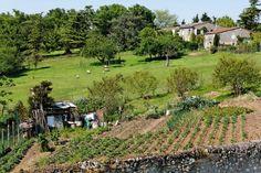 Agriculture des villes, agriculture des champs, rencontre avec Bernard Artigue et Philippe Abadie
