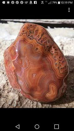 Minerals And Gemstones, Rocks And Minerals, Lake Superior Agates, Stones And Crystals, Gem Stones, Beautiful Rocks, Rocks And Gems, Natural Wonders, Rock Art