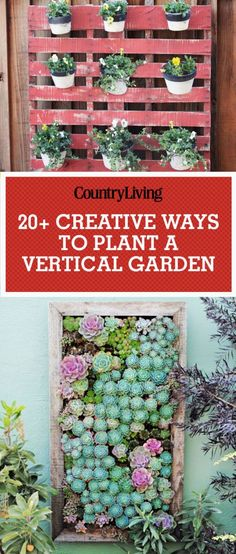 If you've always wondered how to make a vertical garden, here are some of the best and easiest vertical garden ideas you can do yourself.
