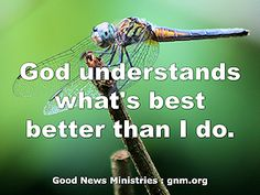 Subscribe to the free Good News Reflections, making the scriptures meaningful for your everyday life. http://gogoodnews.net/DailyReflections/