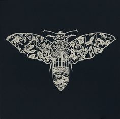 "Moth Paper-Cut Art Print 12"" x 12"""