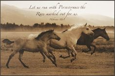 """Horse Trio  by Robert Dawson, """" Let us run with perseverance the race marked out for us. Hebrews 12:1"""