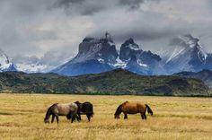 Torres del paine , Chile , patagonia