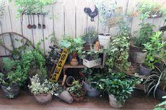 B # garden Garden Paths, Garden Art, Garden Design, Micro Garden, Big Backyard, Garden Junk, Enchanted Garden, Green Garden, Growing Plants