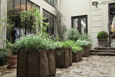 Merci Shop in Paris, France, Remodelista  330L Bacsac Planters