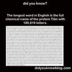 The longest word Wtf Fun Facts, Random Facts, Random Things, Odd Facts, Crazy Things, Random Stuff, Interesting Information, Interesting Facts, Weird But True