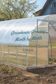 greenhouse gardening Greenhouse Growing Month by Month - A Greenhouse Growing Schedule Homemade Greenhouse, Outdoor Greenhouse, Cheap Greenhouse, Greenhouse Effect, Backyard Greenhouse, Greenhouse Growing, Mini Greenhouse, Greenhouse Plans, Outdoor Gardens
