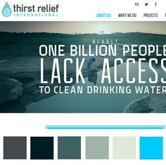 Thirst Relief, in partnership with you, exists to provide humanitarian and disaster relief to those in need worldwide through the provision of safe, clean drinking water. Changing Lives Through Clean Water and Local Labor. Website Color Schemes, Colour Schemes, Color Palettes, Web Design Inspiration, Design Ideas, Owl Logo, Web Colors, Banner Design, Drinking Water