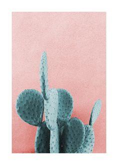 Wall Art Prints Minimalist Prints,UNFRAMED Don/'t be a prick Cactus A4 Print