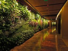 chokesNgags | archatlas: Vertical Gardens Patrick Blanc ...