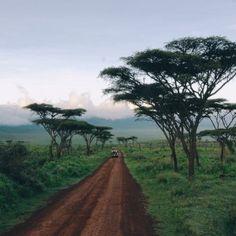 A holiday in Tanzania