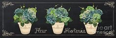 Poster featuring the painting Fleur Hortensia-jp3018 by Jean Plout