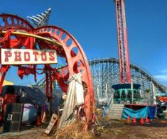 6 Creepy Abandoned Amusement Parks We Want to Visit Garden Projects, Garden Tools, Organic Vitamins, Natural Beauty Recipes, Life Changing Books, Natural Homes, Maquillage Halloween, Amusement Parks, Natural Home Remedies