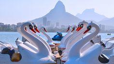 Lagoa - Rio de Janeiro. #Travel #Rio #Brasil