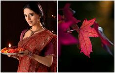 ♥Amrita Rao / association♥ Amrita Rao, Bollywood