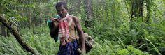 Il a planté une forêt à lui seul.  Payeng, un homme qui n'a jamais voulu renoncer. Depuis plus de 30 ans, il fait pousser des arbres sur un simple banc de sable. Devenu une véritable arche de Noé, le petit havre de paix de Johrat s'est transformé en refuge pour plusieurs animaux, dont des tigres du Bengale et des rhinocéros menacés d'extinction.