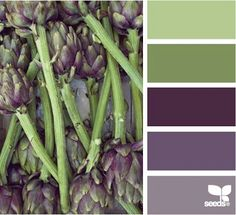 possible kitchen dec palette Color: Produced Color by Design Seeds - light green, mossy green, deep purple, plum, light purple. Design Seeds, Bathroom Colors, Kitchen Colors, Bathroom Ideas, Kitchen Design, Pallet Bathroom, Bedroom Colours, Downstairs Bathroom, Kitchen Paint