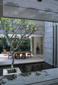 Bassin contemporain avec terrasse bois
