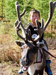 Gepflegte Langeweile in der wunderschönen Mongolei - ITCHY FEET Feet, Goats, Animals, Mongolia, Travel Report, Nice Asses, Animales, Animaux, Animal