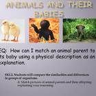 PowerPoint Presentation for kindergarten  EQ:  How can I match an animal parent to its baby using a physical description as an explanation.SKL2...