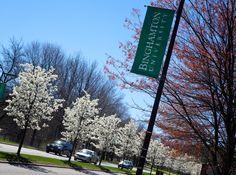 Spring in Binghamton