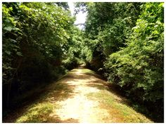 Canal Trail - Roanoke Rapids, NC