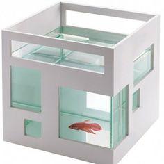 www.leukverjaardagsfeestje.nl  Fishhotel Het Fishhotel is geïnspireerd op de uitgebreide appartementencomplexen in Hong Kong, en de Fishhotel is dan ook stapelbaar tot een ware vissenflat. De glazen kom is uitneembaar, zodat je 'm makkelijk schoon kunt maken. Een origineel cadeautje voor een kinderverjaardag. Wel handig om vooraf af te stemmen of Pappa en Mamma er ook blij mee zijn :)  Prijs v.a. € 6,95