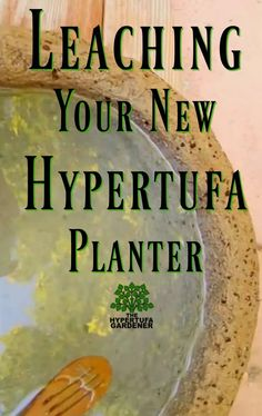 you have waited for your pot to cure (and it seems to take forever when you are waiting) then you have to wait for the alkalinity to be leached from the pot. More waiting? I am too impatient for that! Here is my take on Express VIDEO included. Diy Concrete Planters, Concrete Crafts, Concrete Garden, Concrete Projects, Wall Planters, Concrete Cement, Container Water Gardens, Container Gardening, Container Plants