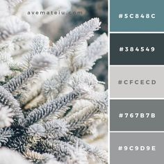 Tree branches covered in snow Color Palette – Ave Mateiu House Color Palettes, Color Schemes Colour Palettes, Cool Color Palette, Grey Palette, Color Schemes With Gray, Rustic Color Palettes, Pallet Tree Houses, Stoff Design, Website Design